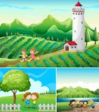 Three scenes with field and park. Illustration Royalty Free Stock Image