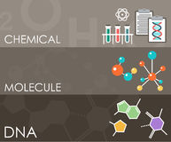 Three science banners. Infographics. Royalty Free Stock Images
