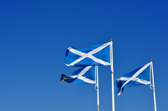 Three Scottish or saltire flags blowing in the wind Stock Photos