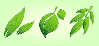 Three ornate leaves icons Stock Photo