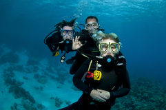 Three scuba divers stock photography