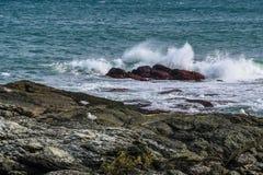 Three Sea Gulls  on the Rocky Coast of Rhode Island. A seascape with threes gulls on the rocks of the Rhode Island coast with breaking waves splashing over rocks Royalty Free Stock Photos