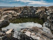Deep Tide Pool in Pink Granite Shoreline, Schoodic Point, Acadia National Park. Three seabirds sit on the pink granite wall of a deep tidepool on the rugged Royalty Free Stock Photo