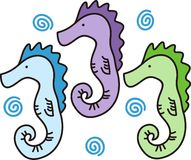 Three Seahorses Royalty Free Stock Image