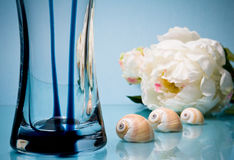 Three seashells with glass vase on blue Royalty Free Stock Photography