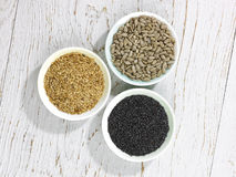 Three seeds Stock Image