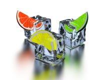 Three segments citrus Stock Images