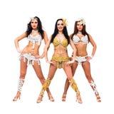 Three sexy girls Stock Images