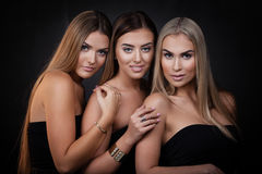 Three sexy girls Stock Images