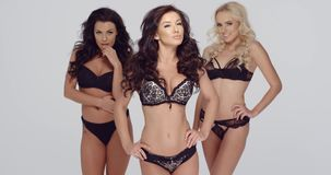 Three sexy ladies in chic black lingerie stock footage
