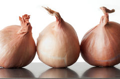 Three Shallots Royalty Free Stock Photography