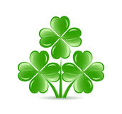 three  shamrocks with four lucky leaves Royalty Free Stock Photos