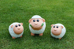 Three sheep on the grass Stock Photos