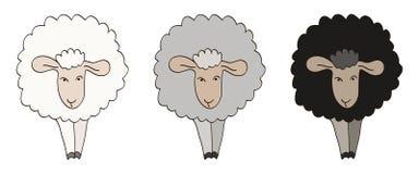 Three Sheep Illustration. Royalty Free Stock Photos