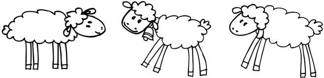 Three sheeps. Three funny sheeps on white background. illustration Stock Images