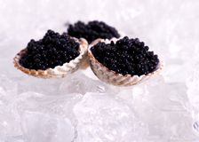 Three shell with black caviar on ice, close up Stock Photo