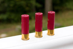 Three shotgun cartridges Stock Photography