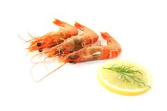 Three Shrimp with lemon Stock Photo