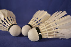 Three shuttlecocks for a badminton game Royalty Free Stock Images