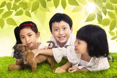 Three siblings and dog in park Royalty Free Stock Photography