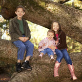 Three siblings in a tree Royalty Free Stock Photos