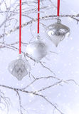 Three Silver Christmas Ornaments with Snow. Three elegant silver Christmas ornaments hanging on red ribbons from crystal covered branches. Light blue background stock photography