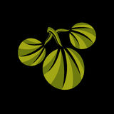 Three simple green vector leaves of deciduous tree, stylized  Stock Photos