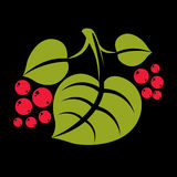 Three simple green vector tree leaves with red seeds, stylized n Royalty Free Stock Photo