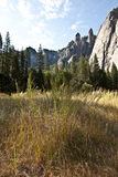 Three sisters cliffs. And golden meadow in Yosemite National Park, CA Royalty Free Stock Photography