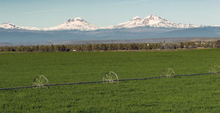 Three Sisters Stands Majestic Oregon Cascade Mountain Range. Farm irrigation tools stand in the farm fields near Three Sisters and Bend, Oregon Stock Photo