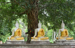 Three Sitting budda statue Stock Photo