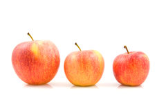 Three sizes of apples Stock Image