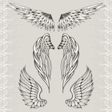Three sketches of wings Royalty Free Stock Photo