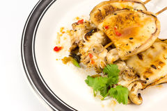 Grilled squid. With sauce isolated on white background Royalty Free Stock Photo
