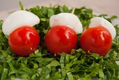 Three skewers with mozzarella and tomatoes stock photography