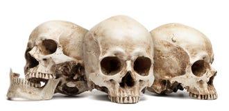 Three skull Stock Photo