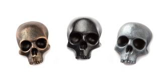 Three skull models Royalty Free Stock Image