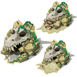 Three skulls of the animals in bottom cave Royalty Free Stock Photography