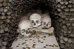 Three Skulls and Coins Royalty Free Stock Photo