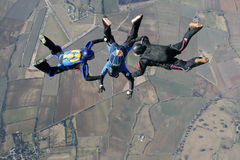 Three skydivers in freefall. High up in the air Stock Image