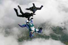 Three skydivers in freefall. Holding hands Stock Photos