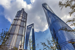Three Skyscrapers Trees Liujiashui Shanghai China Stock Photos
