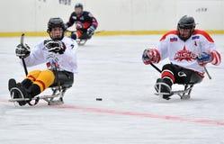 Three sledge hockey players Royalty Free Stock Image