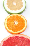 Three slice fresh citrus Stock Image
