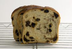 Three slices of raisin bread. Sitting on a cooling rack Stock Photography