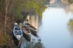 Three small boats moored in the river Bacchiglione in Padova in Veneto (Italy). Photo made in three small boats in the river Bacchiglione in Padova in Veneto ( royalty free stock image