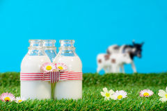 Three small bottles of milk in a meadow Stock Photos