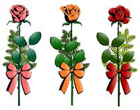 Three small bouquets of roses decorated with ribbo Stock Photography