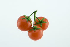 Three small cherry tomatoes Stock Photography