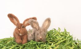 Three Small Felted Rabbits or Bunnies on Green Faux Grass and White Background stock images